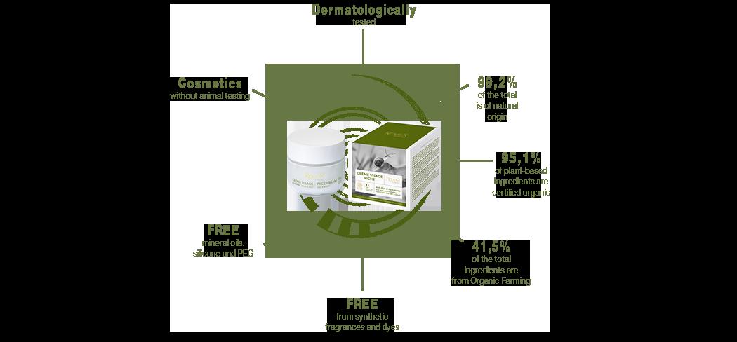 Diagram Snail Slime Cream Rich