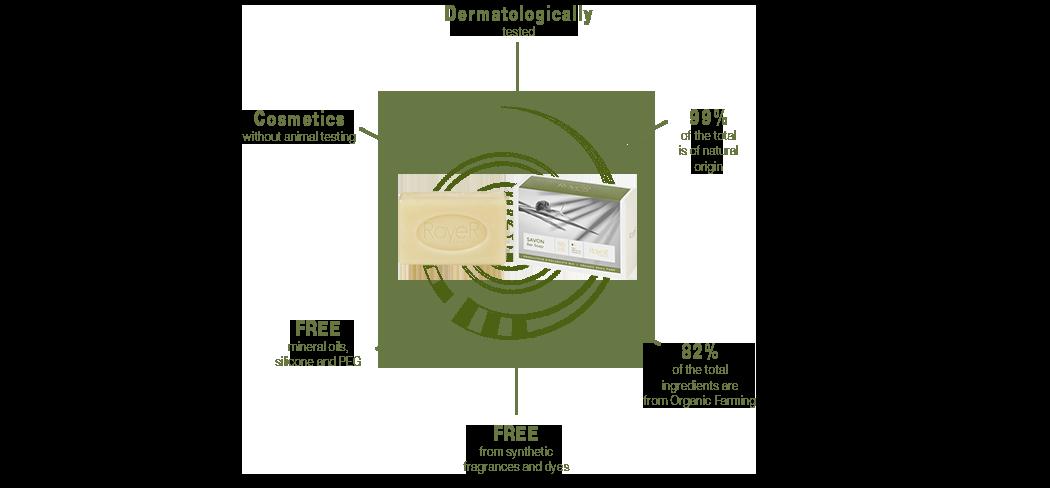 Diagram Snail Slime soap